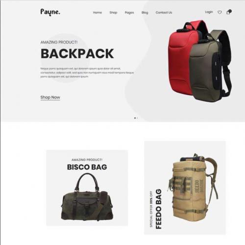 简洁的背包商城网站模板特效代码