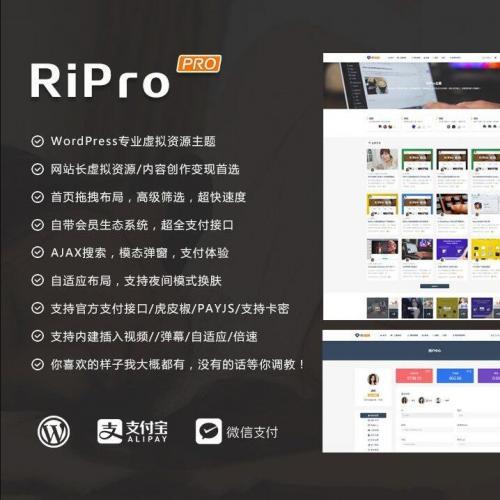 WordPress模板 RIPro主题 5.6 日主题虚拟资源素材修复版源码