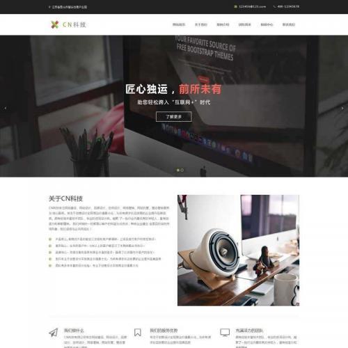 大气的互联网服务科技公司网站模板HTML网页代码